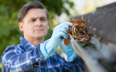 How to Clean the Gutters on Your Home